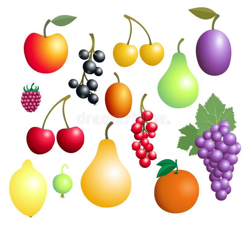 jagody zmiany koloru pobierania owoców łatwo editable w pełni ilustracyjny wektora ilustracji