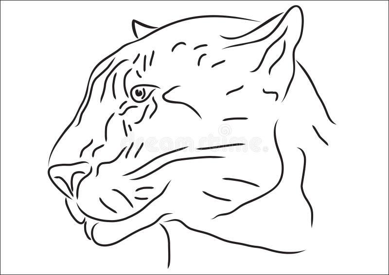 jaguar stock illustrationer