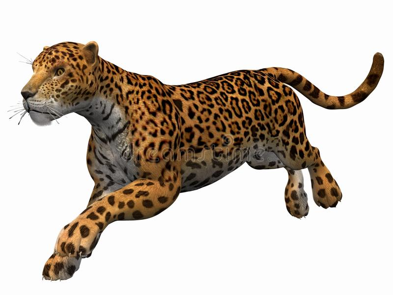 jaguar royaltyfri illustrationer