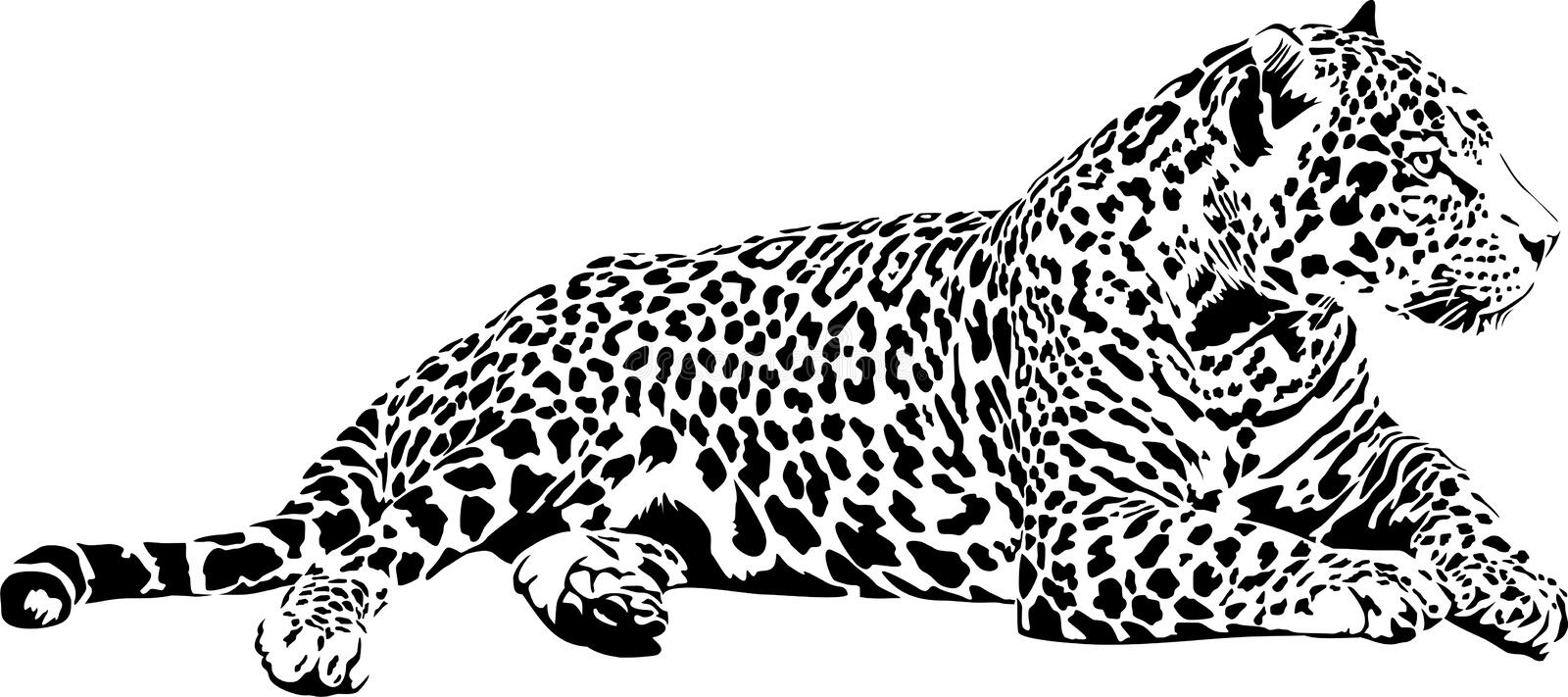 jaguar stock illustrationer