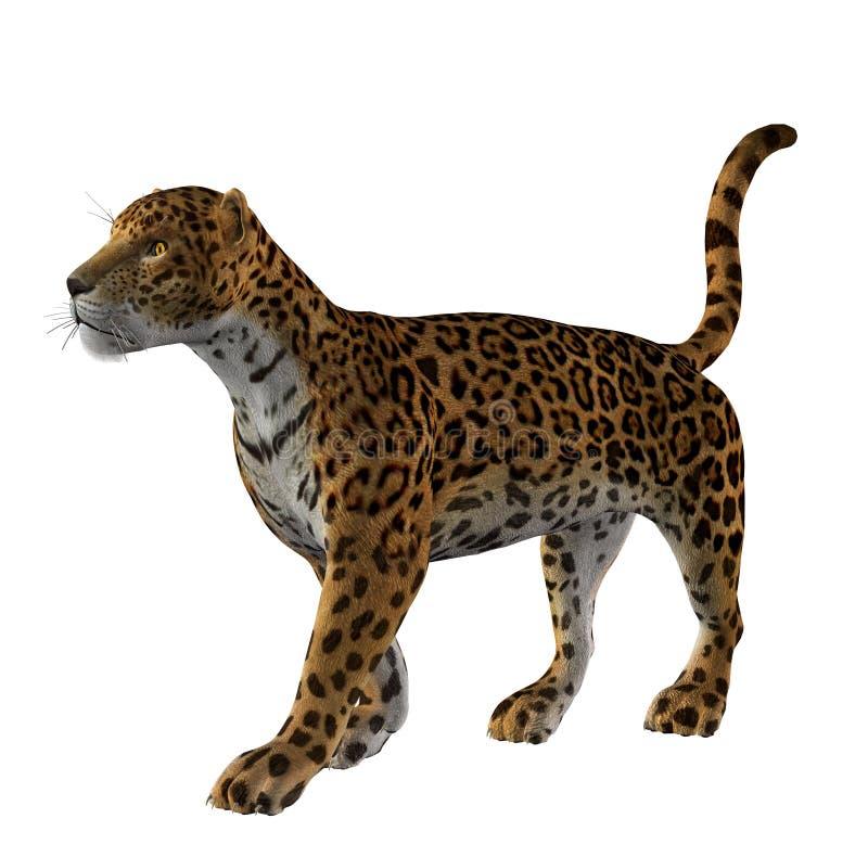 Download Jaguar Stock Image - Image: 9824601