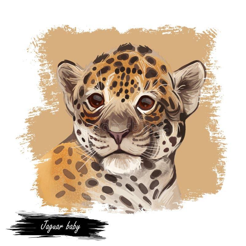 Jaguar baby tabby retrato fechado Fauna Panthera carnivore Vida selvagem da América do Sul, desenhou um grande mamífero com pelúc ilustração stock