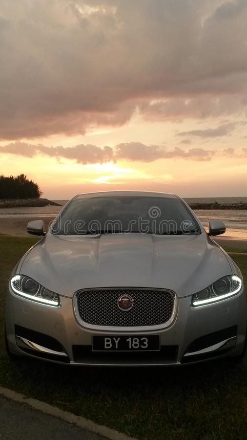 Jaguar brunei stock photos