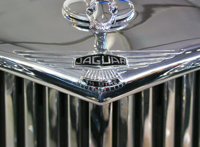 Jaguar chromu Cowl Klasyczna odznaka fotografia stock