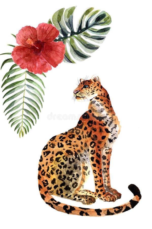 Jaguar d'aquarelle d'isolement sur un fond blanc illustration libre de droits