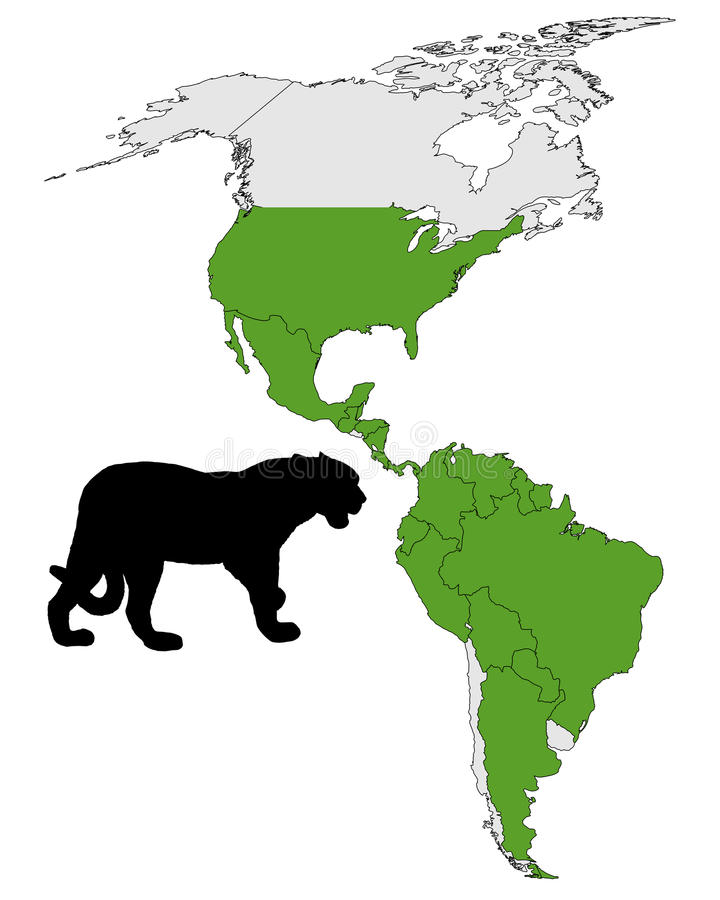 Download Jaguar distribution stock vector. Image of silhouette - 18242787
