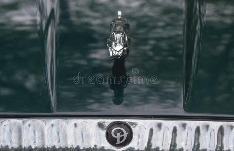 Jaguar emblem arkivbild