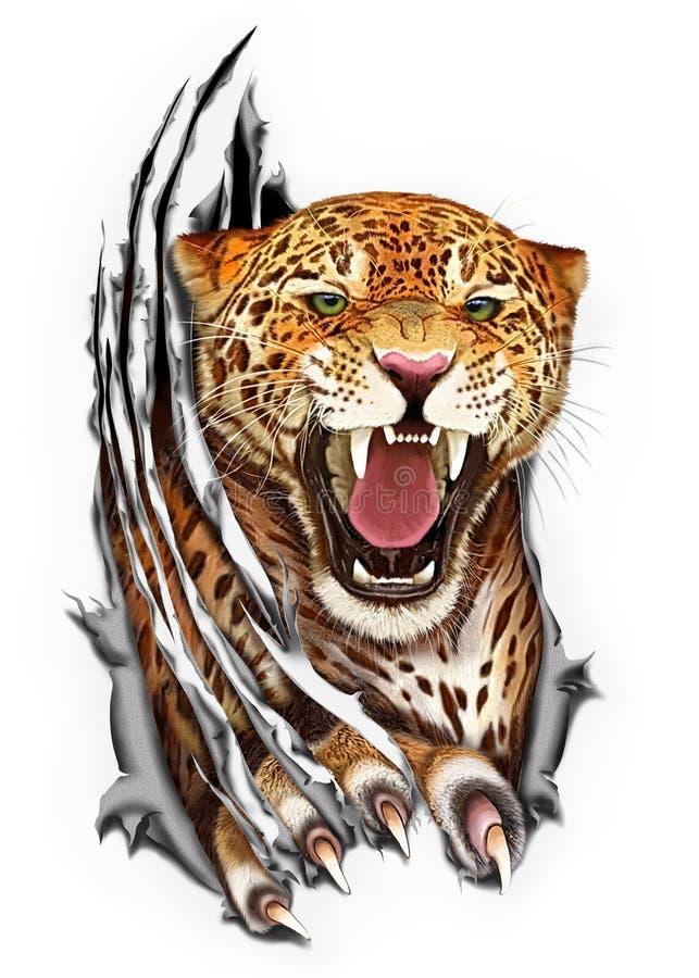 Jaguar jordluckrare som river tyget royaltyfria bilder