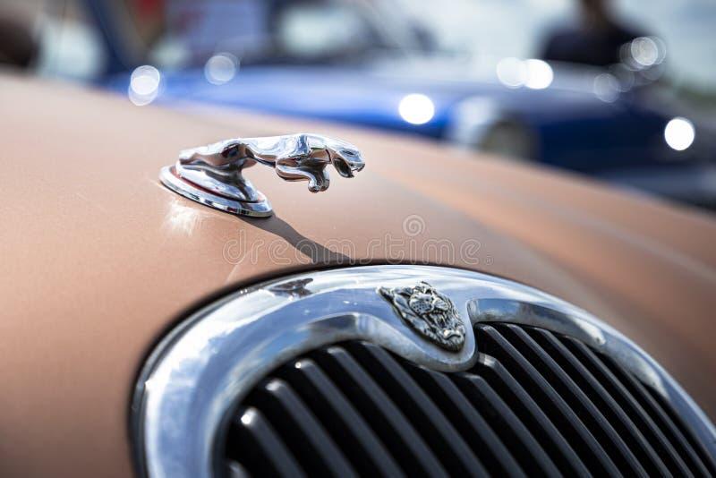 Jaguar kapiszonu ornamentu znak Klasyczna luksusowa samochodowa czapeczka Makro- bocznego widoku fotografia Strojeniowy przedstaw obrazy stock