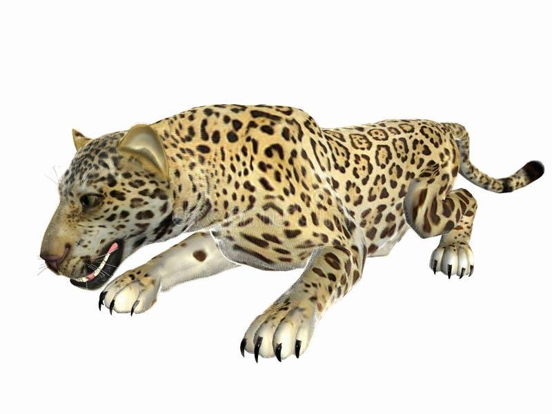 Jaguar que se agacha fotos de archivo