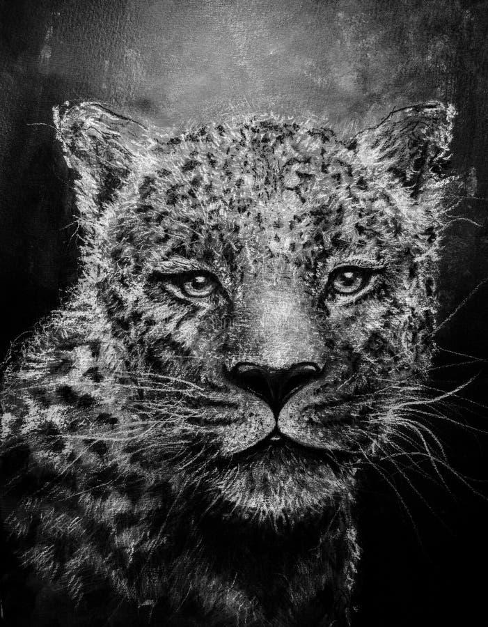 Jaguar sketch in charcoal royalty free stock image