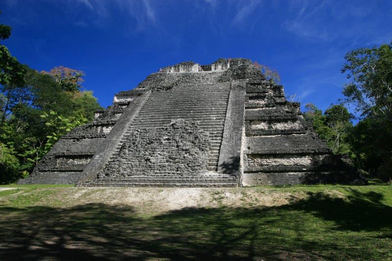 Jaguar tempel arkivfoton