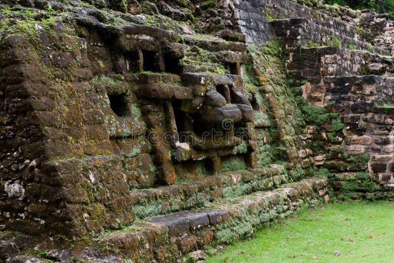 Jaguar-Tempel, Lamanai Belize stockbilder