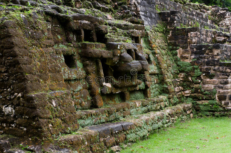 Jaguar Temple, Lamanai Belize stock images