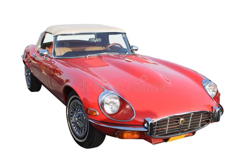 Jaguar vermelho fotografia de stock royalty free