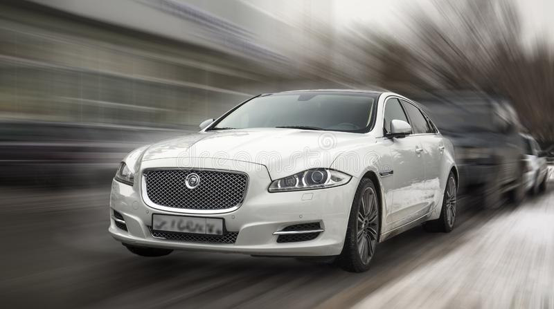Jaguar vit bil arkivbilder