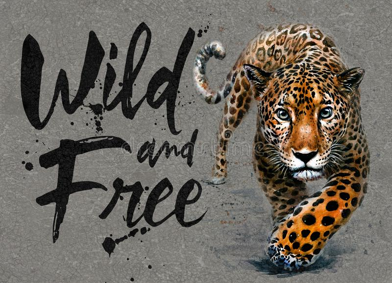 Jaguar watercolor painting with background, predator animals wildlife, wild and free wildlife print for t-shirt. Jaguar animals watercolor, wild cat, predator in stock photography