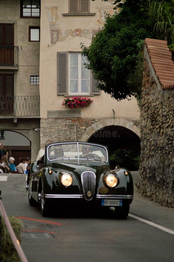 Jaguar XK120 à Bergame Grand prix historique 2015 photos stock