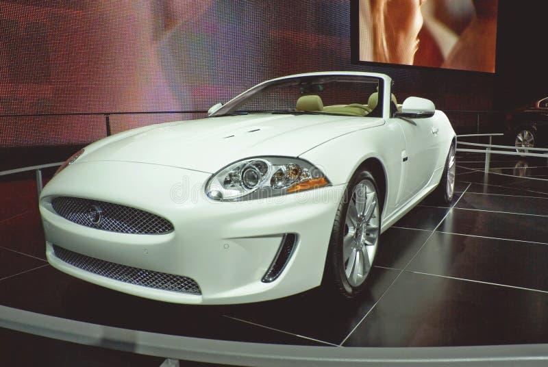 Jaguar XK stock photos