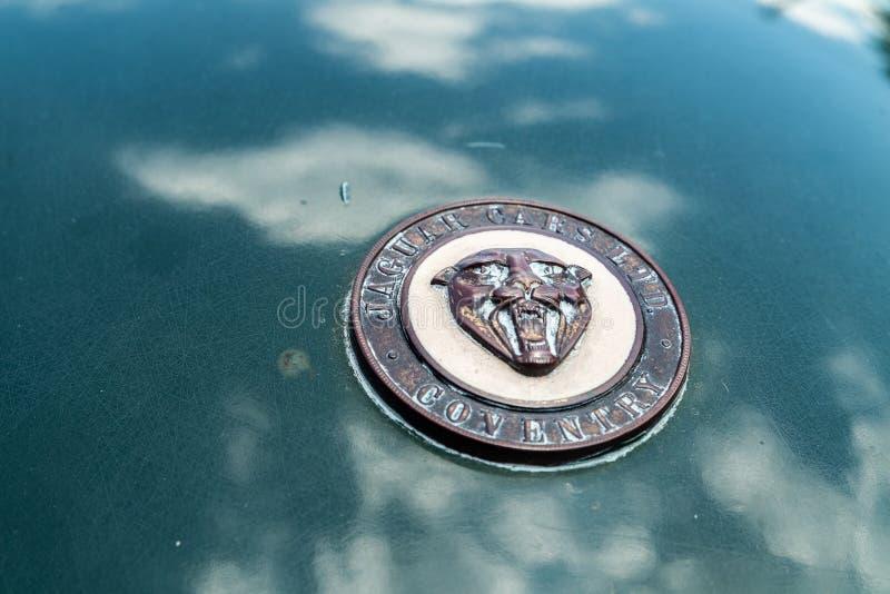 Jaguar XK120 odznaka na kapiszonie fotografia royalty free