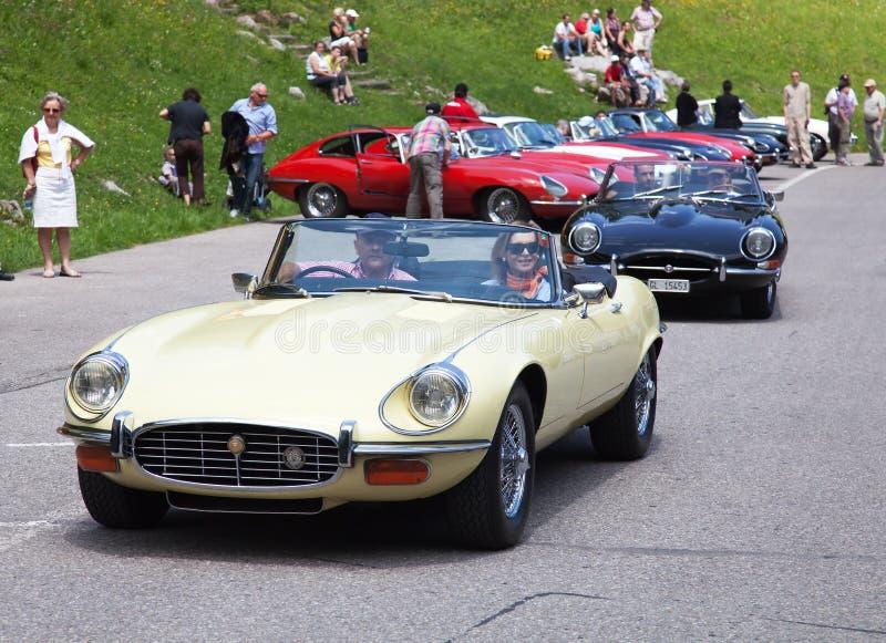 Jaguarbil royaltyfria bilder