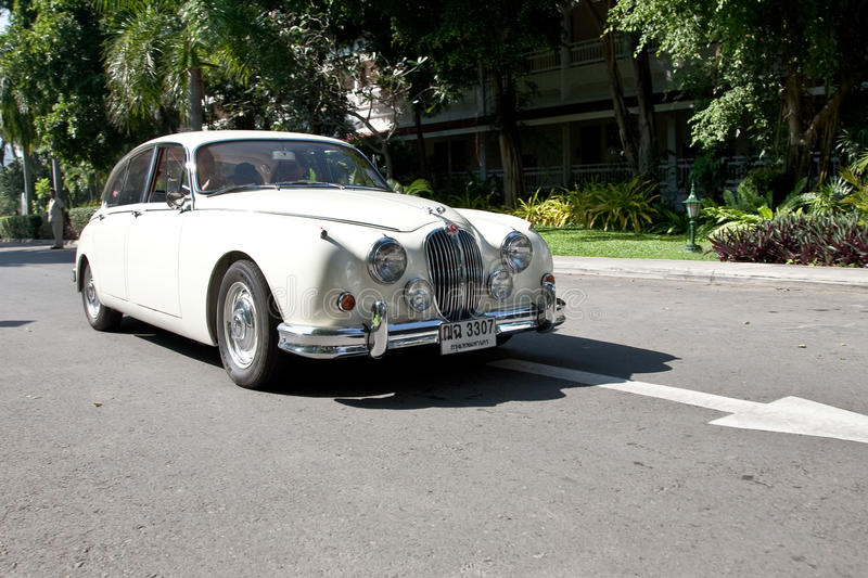 jaguarfläcken för bil ii ståtar tappning royaltyfri bild