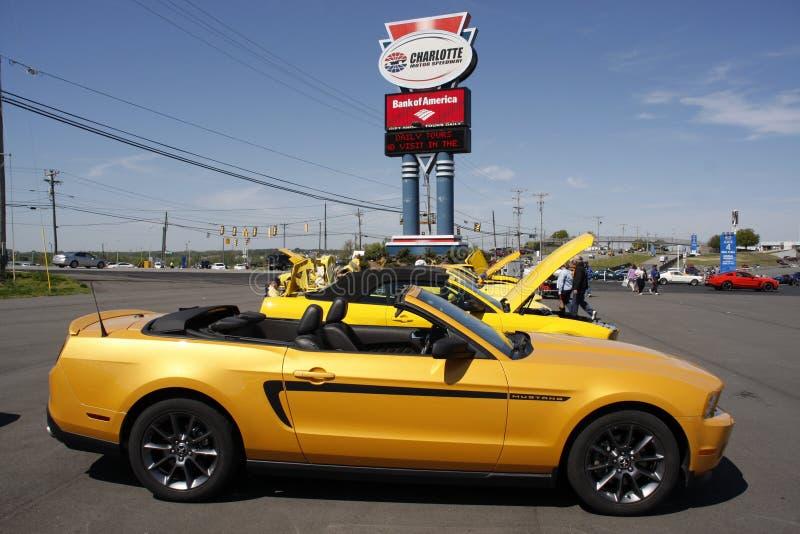 50. Jahrestag Ford Mustang Event bei Charlotte Motor Speedway stockbilder