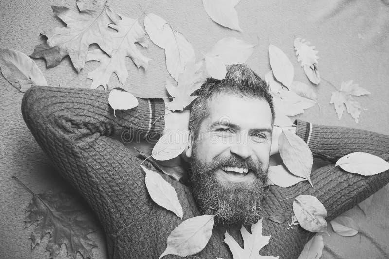 Jahreszeit und Herbst stockfoto