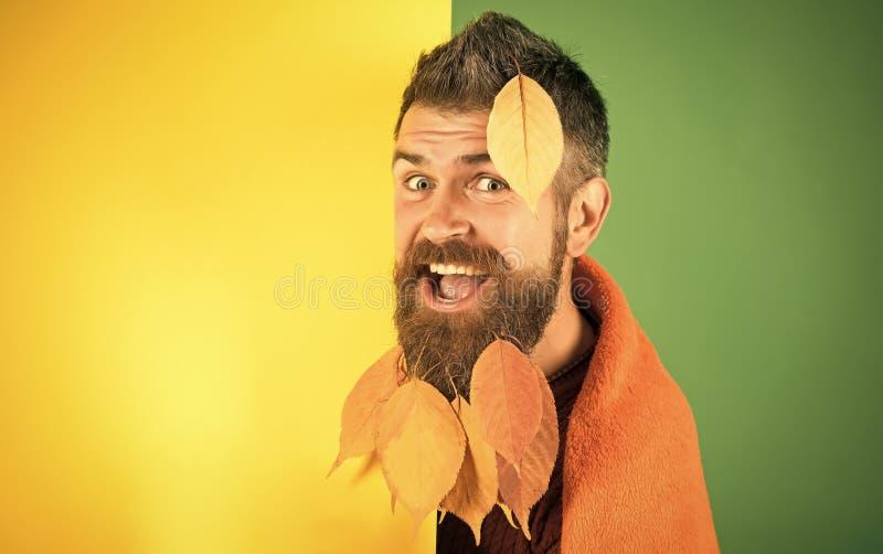Jahreszeit und Herbst stockfotos