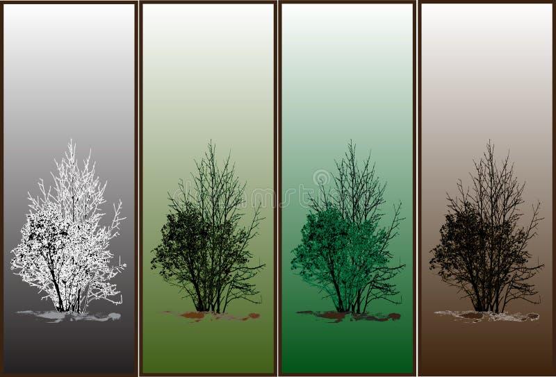 Jahreszeitbäume stockbilder