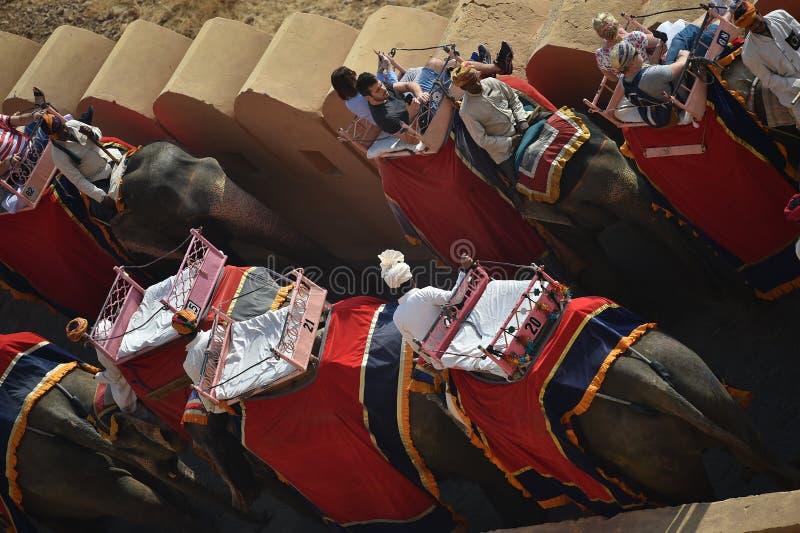 Jaipur, la India, el 1 de diciembre de 2017: Elefantes que transportan al turista imagenes de archivo