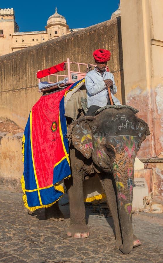 JAIPUR, RAJASTAN, la INDIA - enero, 27: Elefante adornado en Amb fotografía de archivo