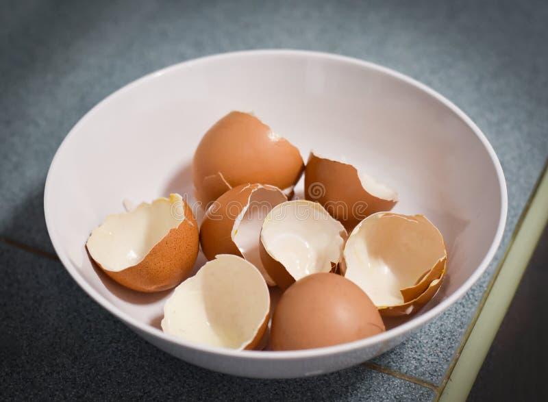 Jajeczna skorupa obraz royalty free