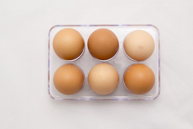 Jajeczna taca, Sześć jajek, Folująca liczba obrazy royalty free