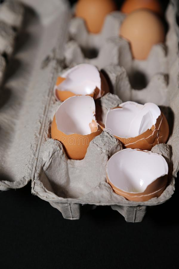 Jajeczne skorupy, stres, jajeczne skorupy i jedzenie! obraz royalty free
