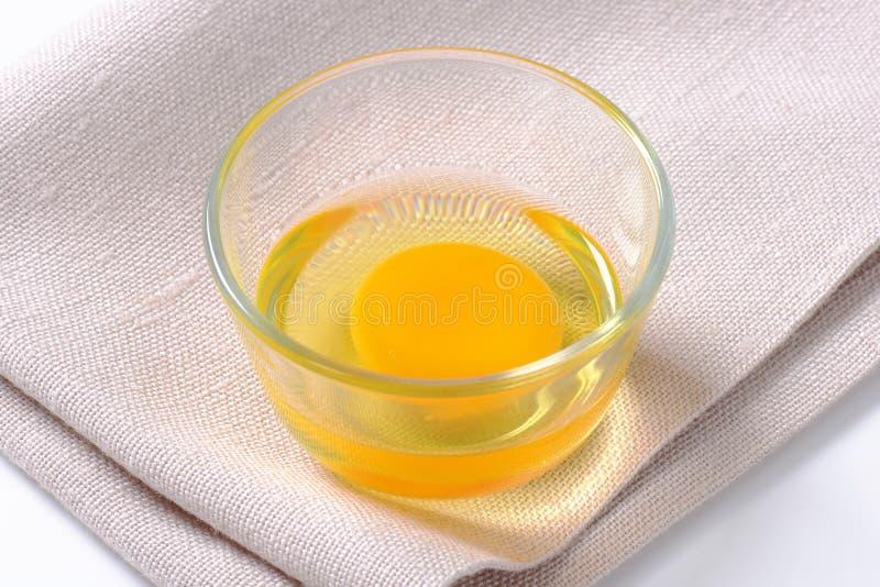 Jajeczny biel i yolk w szklanym pucharze zdjęcia stock