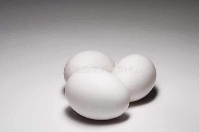 jajeczny grupowy biel zdjęcia royalty free