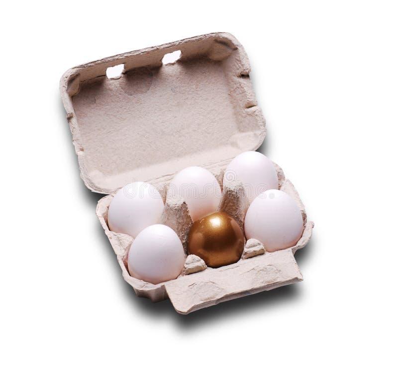 jajeczny złocisty zwykły zdjęcia royalty free