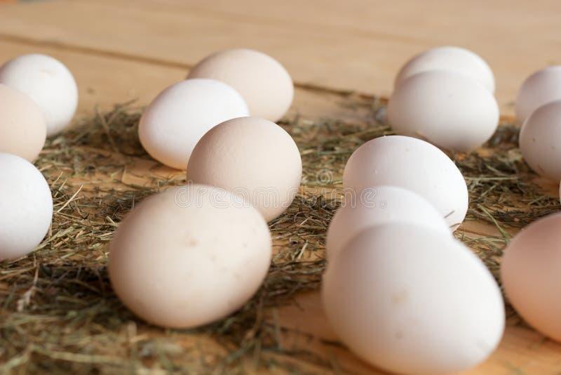 Jajka obrazy royalty free