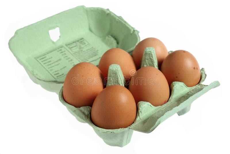 jajka pudełkowaty jajeczny mache papier sześć obraz stock