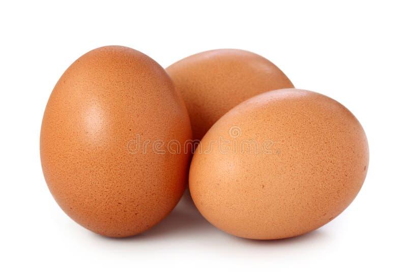 jajka trzy zdjęcie royalty free