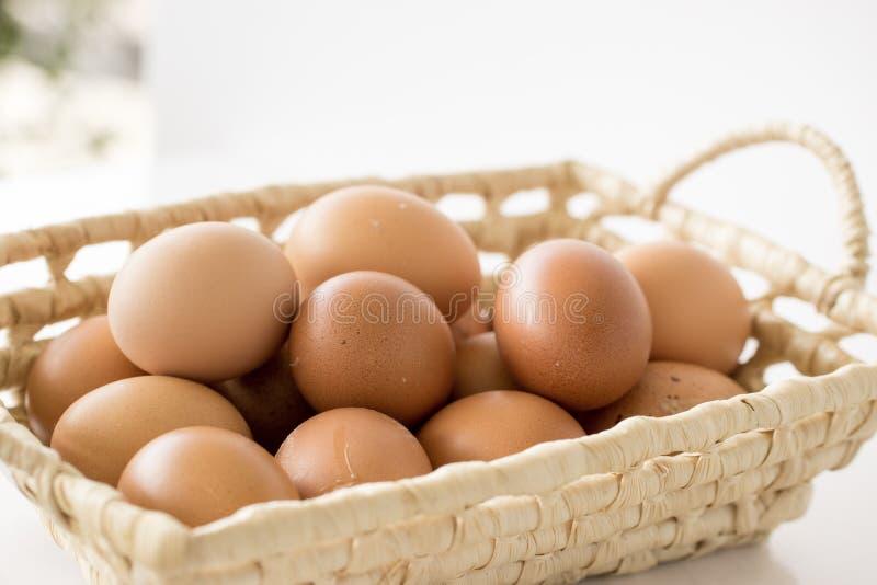 Jajka w łozinowym koszu na drewnianej desce z zamazany ogrodowy tła ` obrazy royalty free