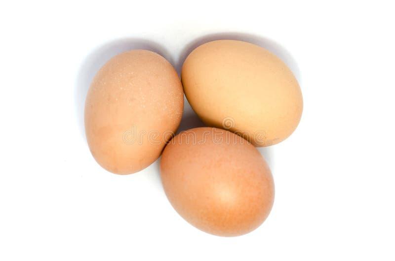 Jajka w białym tle fotografia royalty free