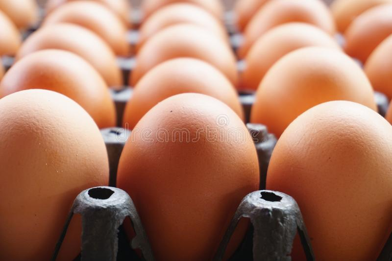 Jajka w czarnych panel jajkach w ciemnych kolorach reprezentują świeżość fotografia royalty free