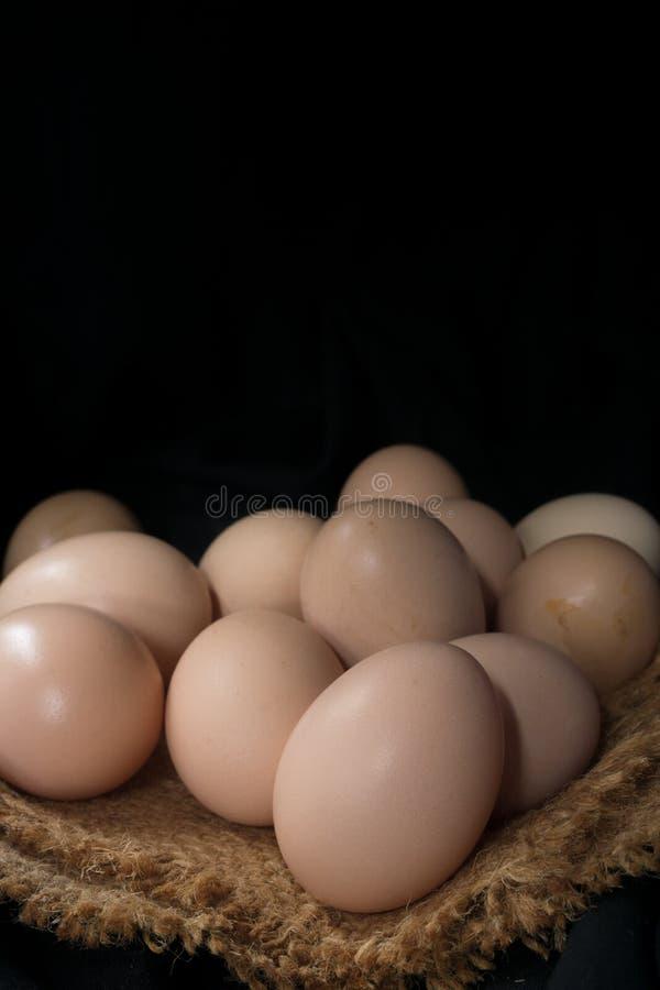 Jajka w gniazdeczku na konopie worku, zmroku kąt fotografia stock