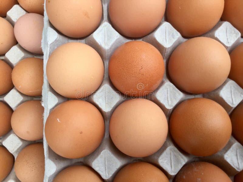 Jajka w kartonie - odgórny przegląd obrazy stock