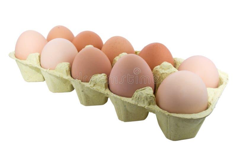 Jajka w pudełku zdjęcia stock