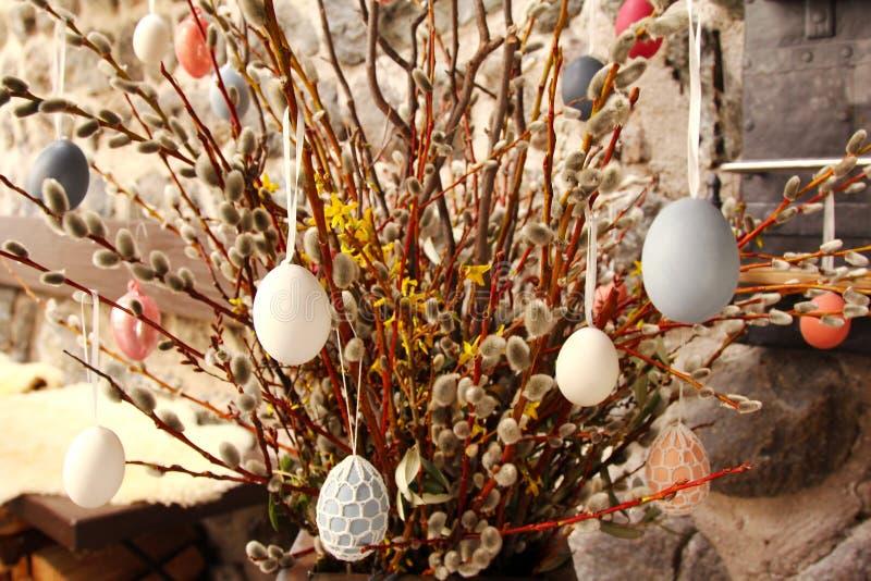 Jajka wiesza na wysuszonych kici wierzby gałąź obrazy stock