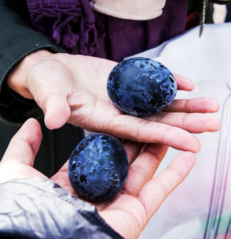 Jajka z czarną skorupą gotowali się w gorącej siarkawej wiośnie w Hakone, Japonia obrazy royalty free