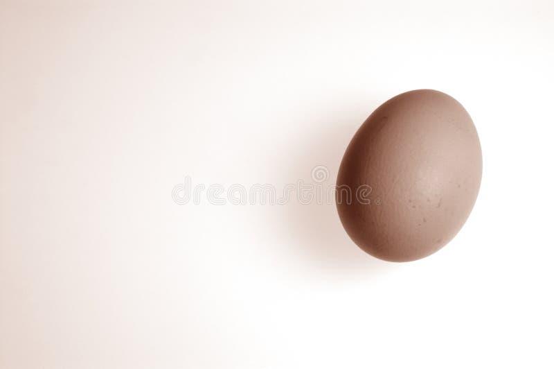 jajko obrazy royalty free